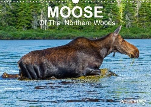 Moose Calendar - 9