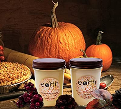 EarthGlo 100% Soy Candle ~ Set Two 8oz Jar Candles In Gift Box
