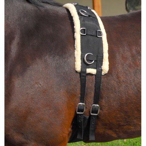 Intrepid International Nylon-Fleece Training Pony Surcingle (Intrepid International Fleece)