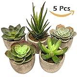 Artificial Succulent Plants 5pcs Deluxe Rustic Stone Washed Pots Artificial Succulents for Your Home, Office, Cafe, Restaurant, Wedding, Home Decor by Superior Succulents