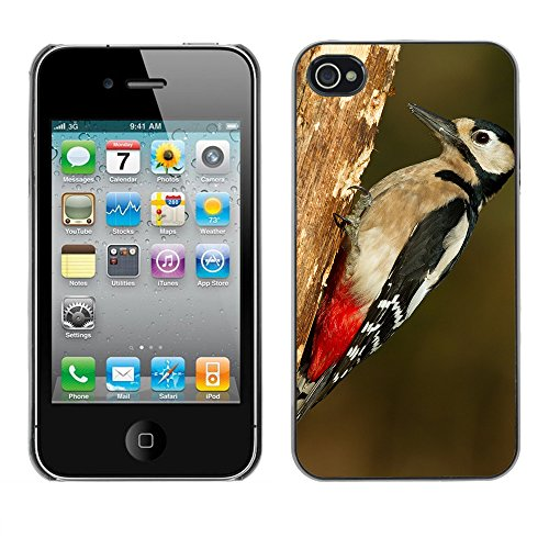 Premio Sottile Slim Cassa Custodia Case Cover Shell // F00007319 oiseau // Apple iPhone 4 4S 4G