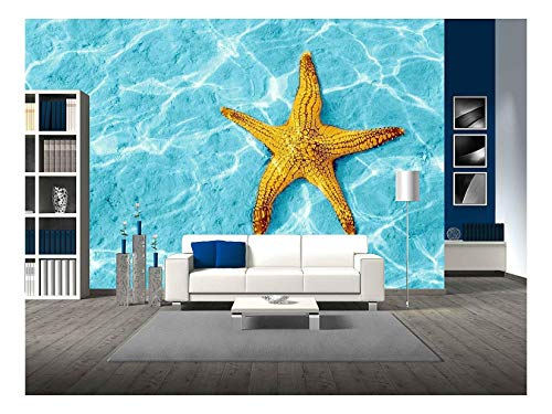 Starfish in Blue Water with Light Reflection
