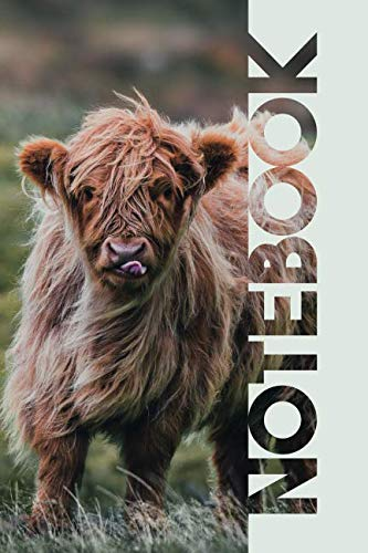 - Notebook: Aberdeen Angus Practical Composition Book for Highland Cow Farmers