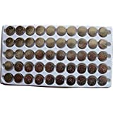 New 50PCS AG10 LR1130 389 LR54 Button Cell Batteries Tray