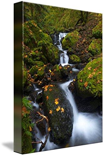 Wall Art Print entitled Gorton Creek Autumn by Mike Dawson | 23 x 32