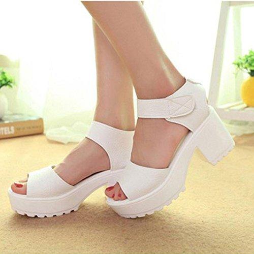 Ouvert Toe Chaussures Sandales Femme Blanc Hauts Été Sandales à Bout Bovake Gladiator Talons waXpII