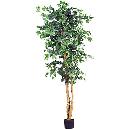 (Nearly Natural 5209 Ficus Silk Tree, 6-Feet, Green )