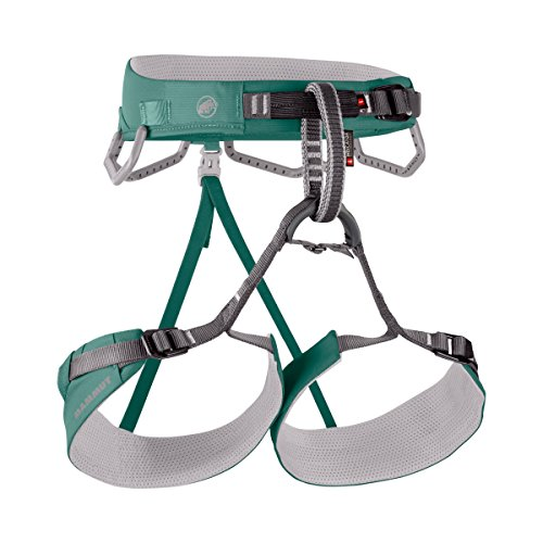 Mammut Belay (Mammut Togir 3 Slide Harness - Women's Serpentine, M)