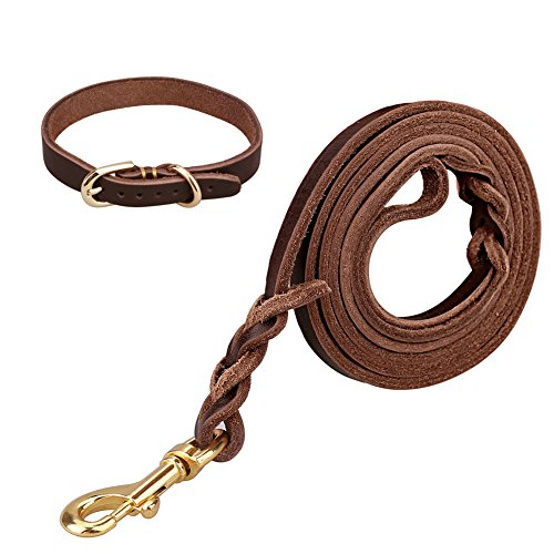 CocoPet 5FT Luxury Handmade Heavy Duty Genuine Leather Dog Leash Coupler and Collar Set Durable and Strong for Training Walking Small Medium Dogs Brown (S) (Leash Collar And Leather Set)