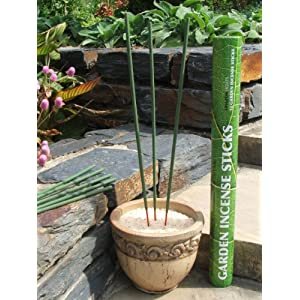 Amazon Lights All-natural Premium Citronella Outdoor Garden Incense Sticks with 2.5 - 3.0 Hour Burn Time. Brazilian Andiroba Oil Blended with Citronella, Rosemary & Thyme.