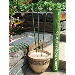 Amazon Lights All-natural Premium Citronella Outdoor Garden Incense Sticks with 2.5-3.0 Hour Burn Time. Brazilian Andiroba Oil Blended with Citronella, Rosemary & Thyme (12-incense sticks per tube)