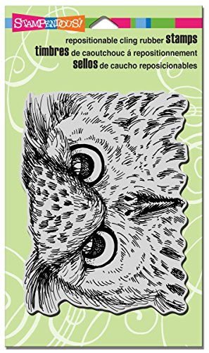 STAMPENDOUS Cling Rubber Stamp, Look Into My Eyes   -