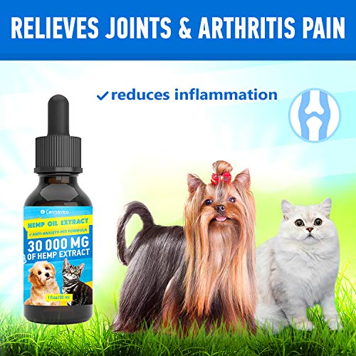 51symN7tUjL - CANNAVICO Hemp Oil Extract for Dogs & Cats - Anti-Anxiety Pet Formula - 100% Natural Ingredients - Hypoallergenic - Stress Sleep Aid -Made in USA
