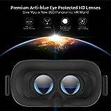 DESTEK V5 VR Headset, 110°FOV Eye Protected HD
