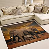 ALAZA Sunset African Elephant Area Rug for Living Room Bedroom 5'3 x 4′