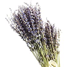 100stems Real Natural Dry Lavender bunch Dried Flower,Decorative Flowers Bouquet for Wedding Home Decorations Valentine's Day Gifts (100)