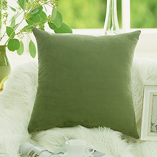 Silk Velvet Throw (Luxury Velvet Throw Pillow Covers Soft Smooth Decorative Pillowcases Cushion Cover Solid 9 Colors (20 x 20, SageGreen))