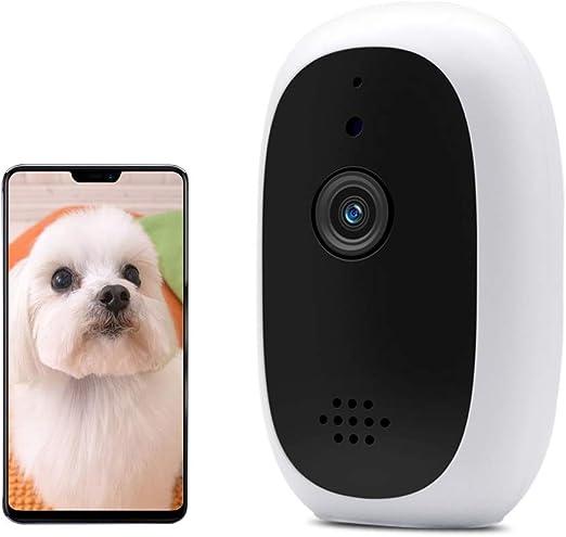 BELOPEZZ - Cámara de visión Nocturna para Mascotas con Dos vías de Audio y detección de Movimiento, WiFi HD Monitor para Mascotas para Perros y Gatos: Amazon.es: Productos para mascotas