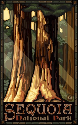 Northwest Art Mall Redwoods Sequoia Nation Park Tree Artwork by Paul A Lanquist, 11-Inch by (Sequoia Redwood Trees)
