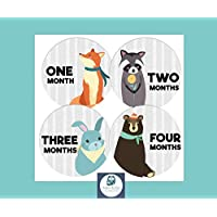 Baby Monthly Milestone Stickers by BabyBumpMoments | Set of 12 Woodland Animal Baby Stickers for First Year | Baby Shower Gift