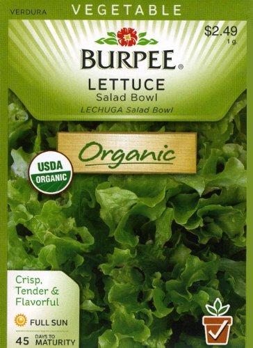Burpee Seed Lettuce (Burpee 60355 Organic Lettuce, Leaf Salad Bowl Seed Packet)