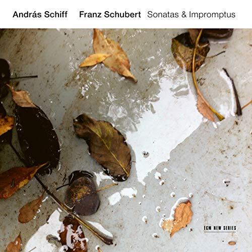 Schubert: 3 Klavierstücke, D. 946 - 1. Allegro assai