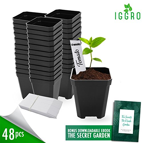 48 pcs Plastic Nursery Pots for Plants 2.75'' Square x 3.25'' Seed Starting/Transplant Plant Containers for Tomatoes Basil Peppers Mint with 48 Label Markers Drain Holes for Germination Last for Years by IGGRO