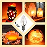 Salt Rock Lamp Bulb 6 Pack + 2 Free 15 Watt