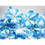 100-Blue-White-Hawaiian-Plumeria-Frangipani-Silk-Flower-Heads-3-Artificial-Flowers-Head-Fabric-Floral-Supplies-Wholesale-Lot-for-Wedding-Flowers-Accessories-Make-Bridal-Hair-Clips-Headbands-Dress