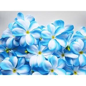 "(100) Blue White Hawaiian Plumeria Frangipani Silk Flower Heads - 3"" - Artificial Flowers Head Fabric Floral Supplies Wholesale Lot for Wedding Flowers Accessories Make Bridal Hair Clips Headbands Dress 38"
