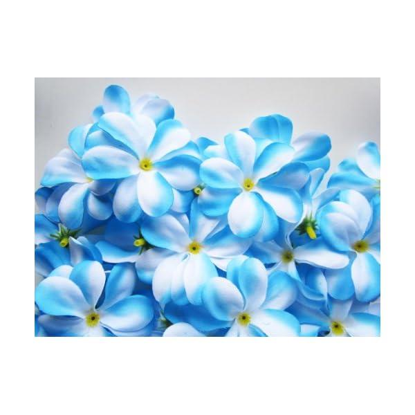 (100) Blue White Hawaiian Plumeria Frangipani Silk Flower Heads – 3″ – Artificial Flowers Head Fabric Floral Supplies Wholesale Lot for Wedding Flowers Accessories Make Bridal Hair Clips Headbands Dress