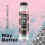 Way2B Watermelon Naturally Flavored Still Water Drink, Powered by Premium Plant Sterol, 12 Oz Bottle (Pack of 6)