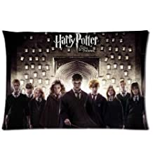 HARRY POTTER 20 by 30 inch Two Side Zippered Cotton And Polyester Rectangle Pillowcases Protector Case