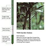 YIDIE Sturdy Metal Garden Stakes 3 Ft Plastic