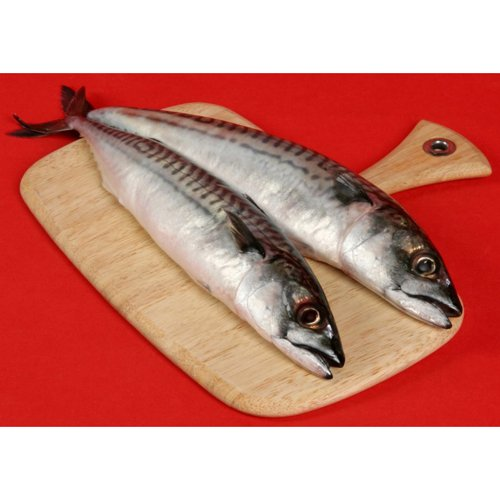 Saba (Norwegian Mackerel) Mackerel - 600-800g - Frozen - 22 Lb Case by Gourmet555