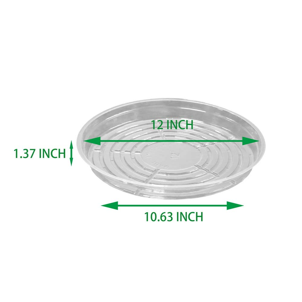 10, 6 Inch TRUEDAYS Clear Plant Saucers Flower Pot Tray Excellent for Indoor /& Outdoor Plants