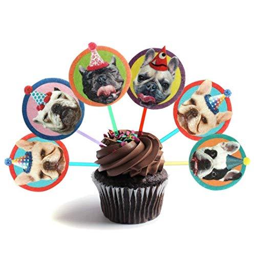 french bulldog birthday - 8