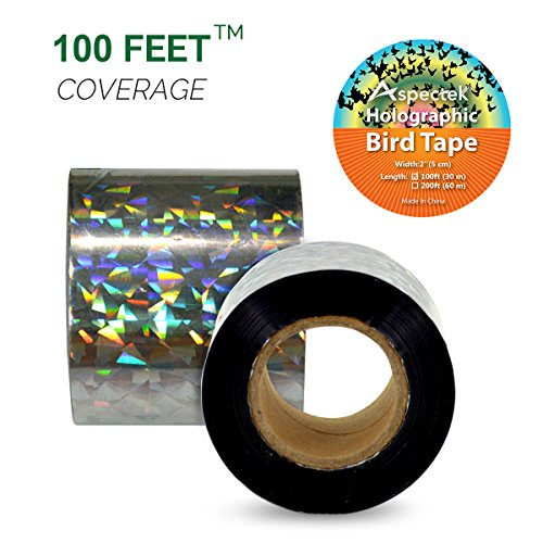 100 Foot 2 Inch Holographic Ribbon Double