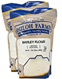 Shiloh Farms - Organic Barley Flour 24 oz - 2 pack