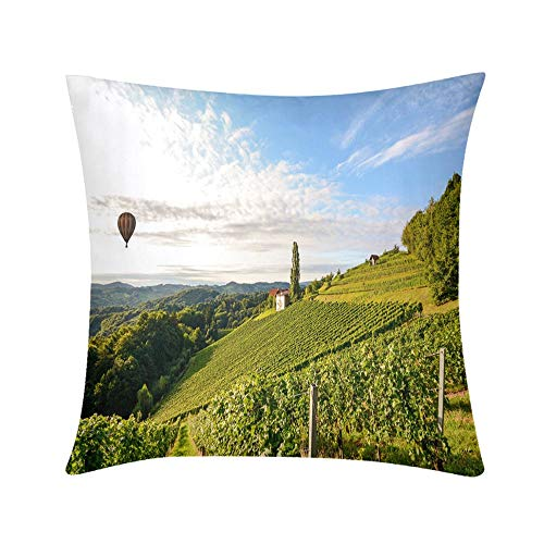 Double Sided Digital Printing Personalized Custom Throw Pillow Vineyards with hot air balloon near a winery before harvest in the tuscany wine Breathable Hypoallergenic Odor-Free Washable Waist pad