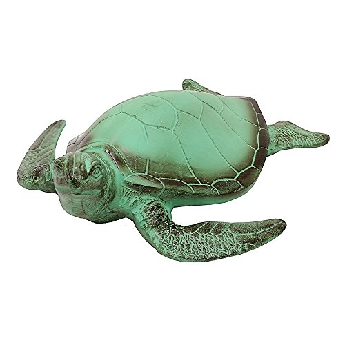 Cheap Sea Turtle
