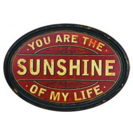 Large Antique Tin Metal Oval Round Wall Sign Plaque: You Are the Sunshine of My Life, - Tin Sign Oval