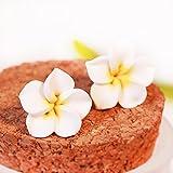 Libaraba Sweet Frangipani Flower Stud Earrings,Summer Earrings for Teens,Women