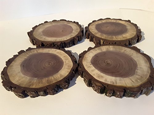 Set of (4)- 6inch Black Walnut wood, Rustic wedding or home décor, candle holder, large coasters, plant stand, Cupcake holder, rustic decoration, seasonal décor, log slice