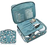 Pockettrip Clear Cosmetic Makeup Bag Toiletry Travel Kit Organizer New 2015 (Flower in Sky Blue)