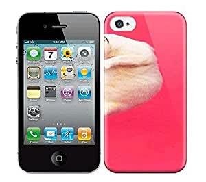 Best Power(Tm) HD Colorful Painted Watercolor Real Cat In Red Hard Phone Case For Iphone 4/4S