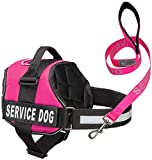 Industrial Puppy Service Dog Harness & Matching Leash Set | Available in 7 Sizes from Extra Small to Extra Large | Vest Features Reflective Patch and Comfortable Mesh Design from