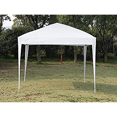 CharaVector Canopy Tent 10 x 10, Pop Up Canopy Tent, Gazebo Tent, Commercial Instant Shelter with a Carry Bag, Outdoor Tent 250D, 4 x Ropes& 4 x Stakes, White : Garden & Outdoor
