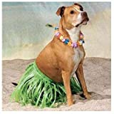 Grass HULA Skirt and LEI Set for LARGE BREED DOG/LUAU Tropical PARTY Decor/NOVELTY