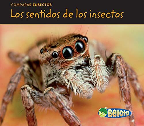 Los sentidos de los insectos (Comparar insectos) (Spanish Edition)
